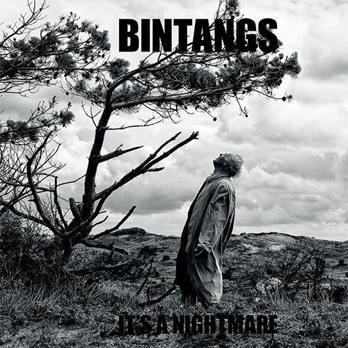 It's a nightmare - Bintangs